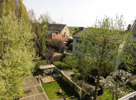 Hübsche Altbauwohnung mit Blick ins Grüne - Gelsenkirchen