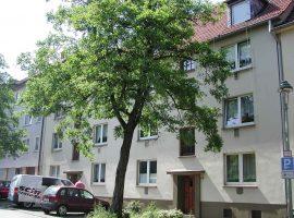 2,5 Raum Wohnung mit Wohnküche. Gemeinschaftsgarten.