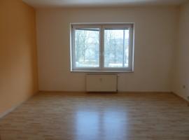 Hübsches 1-Raum-Appartement in zentraler Lage!