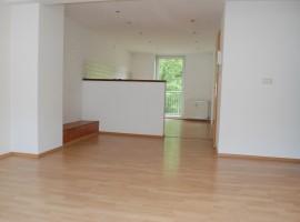 Schöne Raumaufteilung! Wohnung mit offener Küche!