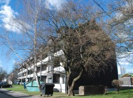 Komplett modernisiert in 2018 - 1,5-Zimmer-Wohnung in Bonn-Weststadt