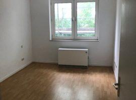 Geräumige 2-Raum-Wohnung in zentraler Lage